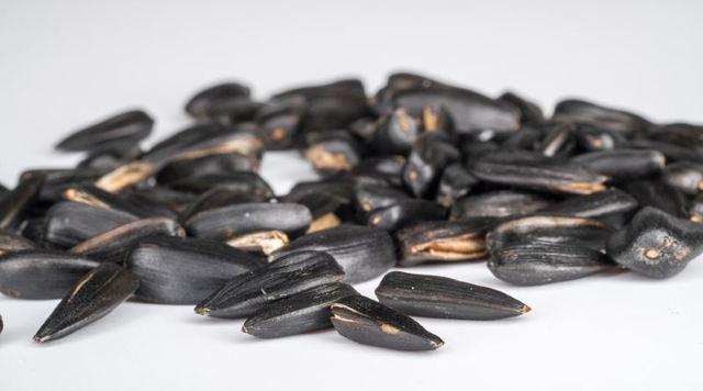 Можно ли есть семечки при геморрое?