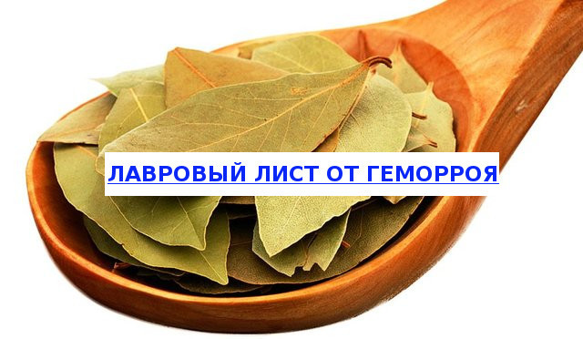 Лавровый лист для лечения геморроя: настой и отвар, ванночки и примочки