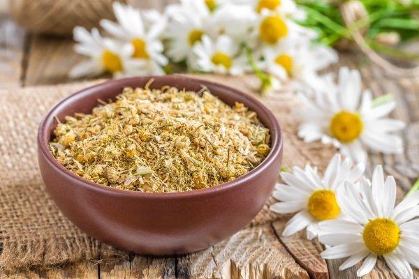 Какие травы используют для лечения геморроя?