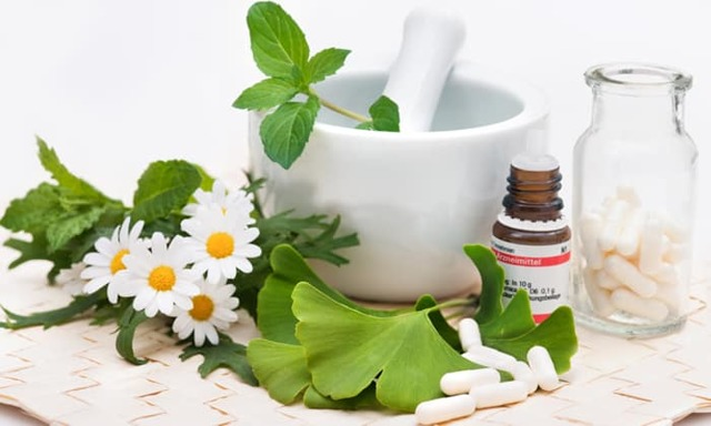 Полынь для лечения геморроя: ванночки, компрессы, клизмы и средства для подмывания