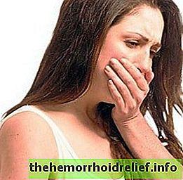 Толстянка для лечения геморроя: мазь и компресс