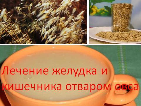 Рецепты из овса для лечения и профилактики запоров