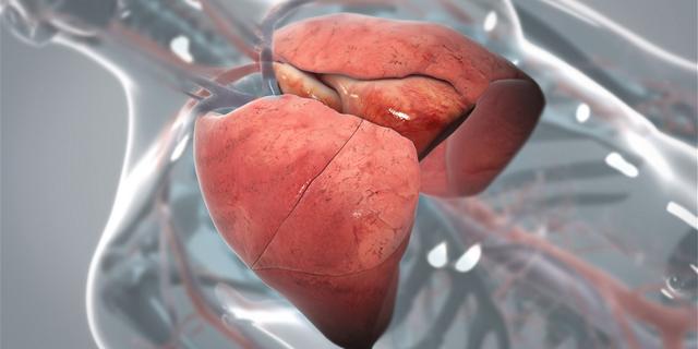 Карцинома легкого: особенности лечения