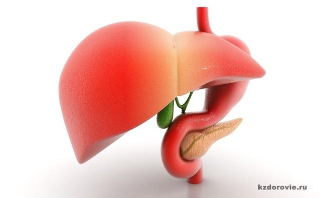Лечение гепатита С народными средствами