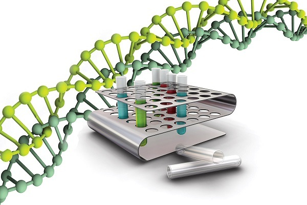 Анализ ПЦР на гепатит С: качественный, количественный, расшифровка
