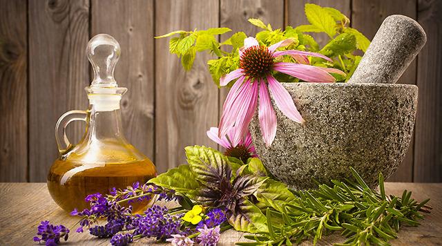 Народные средства от морщин на лице: лучшие рецепты масок, кремов и тоников