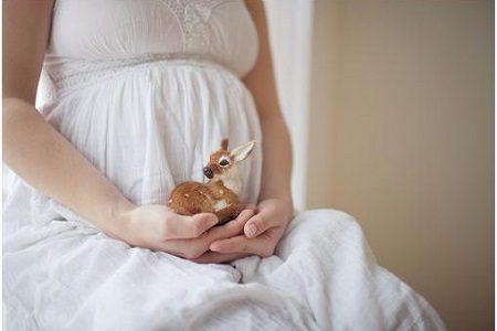 Эссенциале Н: состав, инструкция по применению ампул, можно ли принимать при беременности, обзор отзывов и аналогов, сравнение, что лучше из заменителей