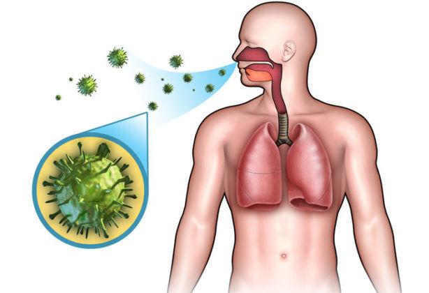 Горечь во рту: причины, от чего может быть привкус, сухость, тошнота, белый налет на языке, причины у женщин, мужчин, детей, причины какой болезни, как избавиться, лечение, отзывы