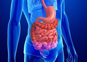 Холелитиаз: что это за болезнь, код МКБ, симптомы у взрослых людей, лечение, осложнения и прогноз, причины и меры профилактики