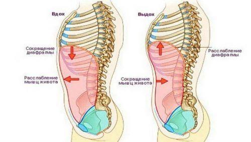 Боль в правом боку под ребрами спереди: что болит в этой стороне у человека, причины, почему бывает после еды или при вдохе, ноющий, тупой, резкий и острый симптом