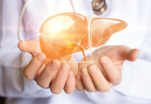 Абсцесс печени: причины, код МКБ 10, симптомы, УЗИ и КТ как методы диагностики, лечение, хроническая форма, осложнения, период реабилитации, диета