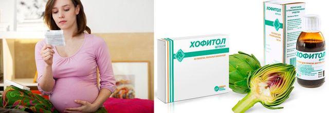 Хофитол при беременности: для чего назначают, помогает ли при токсикозе, можно ли принимать на раннем сроке, обзор отзывов и инструкции по применению