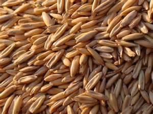 Как лечить холецистит в домашних условиях травами?