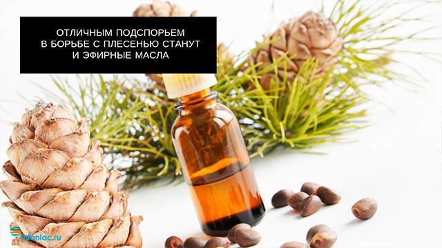 Как избавиться от грибка в организме: традиционные и народные методы, профилактика