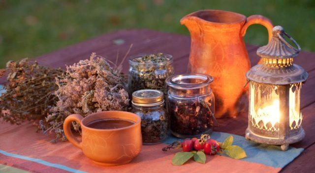 Какие можно использовать травы от бронхита