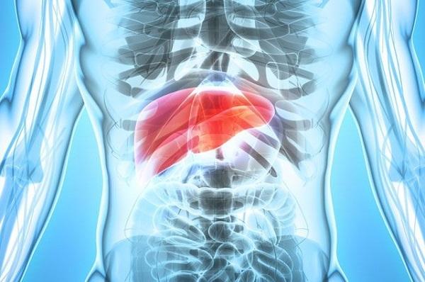 Сколько живут с гепатитом С, продолжительность жизни