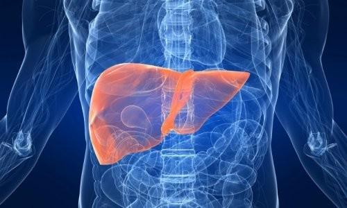 Печеночная энцефалопатия: что это такое, стадии, симптомы при циррозе печени, клинические рекомендации по лечению взрослых людей, диета, прогноз жизни