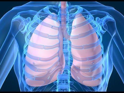 Рассмотрим чем отличается флюорография от рентгенографии