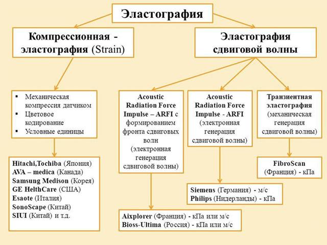 Анализ крови на гепатит А, расшифровка, биохимия