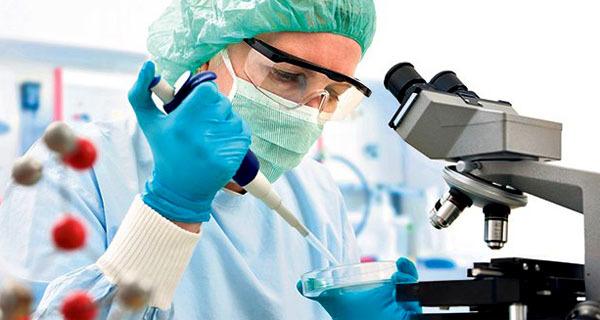 ВПГ 1 и 2 типа, что это за болезнь: методы диагностики, стадии развития и лечение
