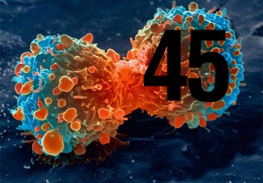 ВПЧ 45 типа у женщин: что это такое, какую опасность представляет и как лечится