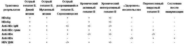 Антитела в крови к гепатиту B: поверхностный антиген вируса
