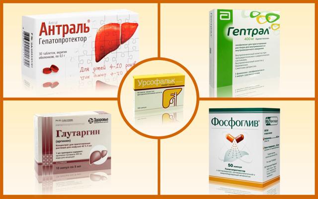 Препараты для печени: список эффективных средств для лечения, недорогие медикаменты для восстановления клеток, лучшие гепатопротекторные фосфолипиды