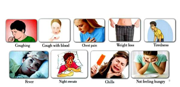Туберкулез: причины, симптомы и лечение
