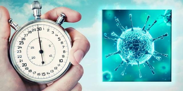 Симптомы гепатита С у женщин: первые признаки на ранней стадии, проявляется ли болезнь в инкубационном периоде, может ли быть ложным анализ у беременных