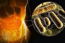 Как проявляется туберкулез гортани