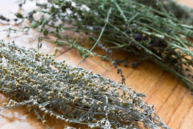 Желчегонные травы: список названий, при застое желчи, при перегибе желчного пузыря и после его удаления, при камнях, лучшее для детей, обзор отзывов