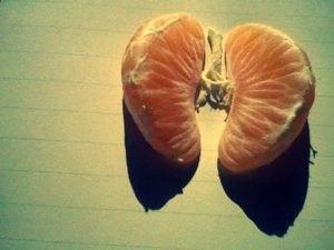 Возбудители пневмонии: что может стать причиной заболевания